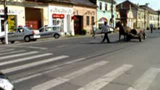 femei singure din Alba Iulia care cauta barbati din Reșița