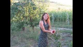 Fete Orhei Moldova publi24