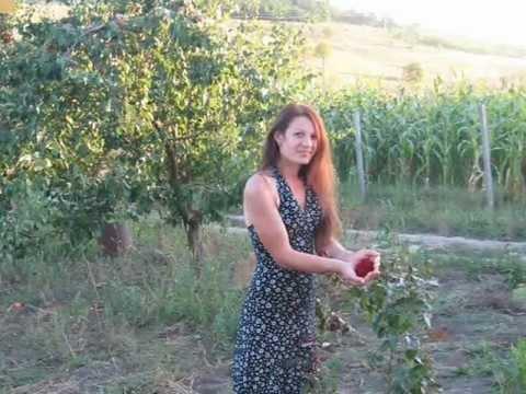 fete de maritat moldova cuplu cauta barbat din curtici